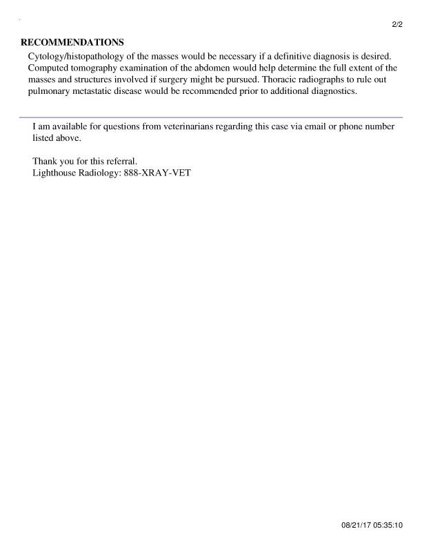 Report pg 2